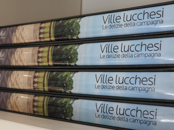 Libro Ville Lucchesi - Publied 2015